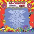 Inilah 41 Musisi Line Up Kedua yang Akan Tampil di Synchronize Fest2019