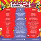 Jadwal Harian Artis Penampil Synchronize Festival2019